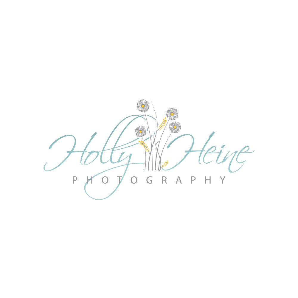 devineportfolio-logo-design-branding-identity-holly-heine-photography-2